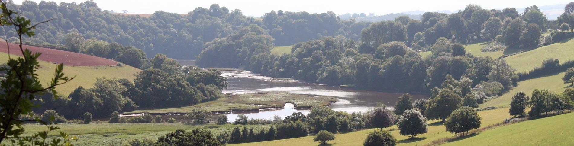 View down the River Dart at Sharpham