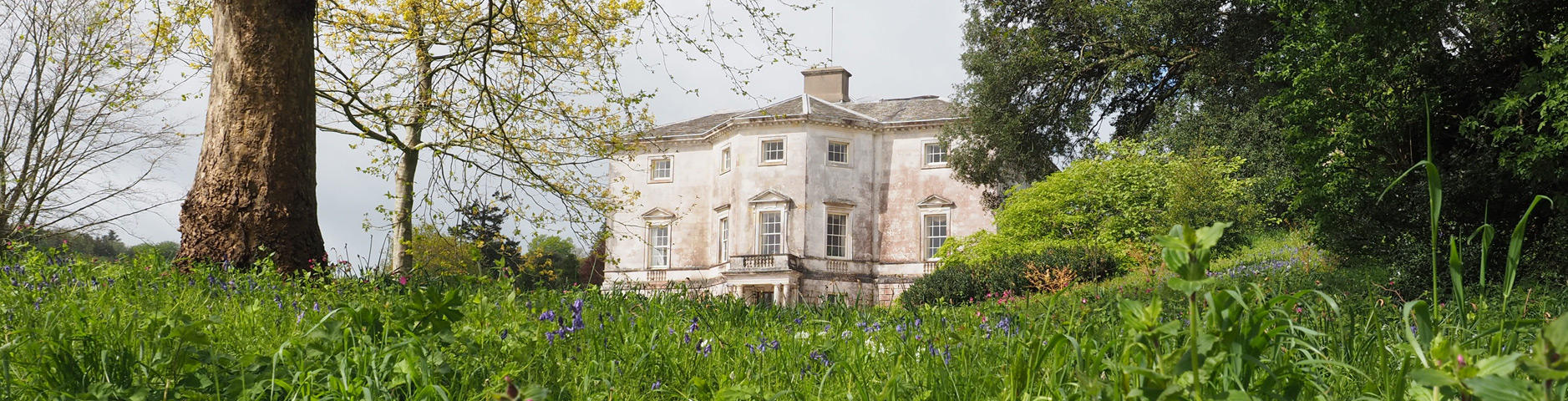 Sharpham House, home for mindfulness, arts and outdoor learning