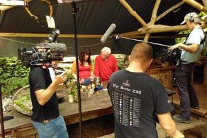BBC Countryfile's film crew record Brigit-Anna making a healing salve from meadow plants with John Craven