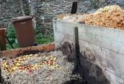 Growing Awareness - nothing's lost with compost