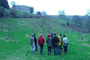 Volunteers in our orchard at Sharpham, learning techniques of caring for fruit trees