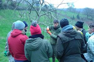 Our gardener Jesse gives instruction to volunteers in our organic orchard at Sharpham