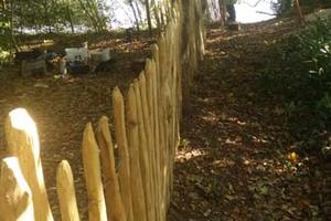 The completed chestnut fence