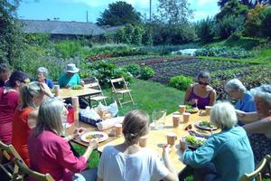 Our Volunteer Harvest Feast in the Walled Garden
