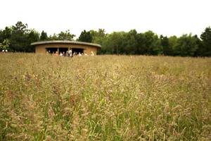 View of the cob ceremonial building at Sharpham Meadow Natural Burial Ground