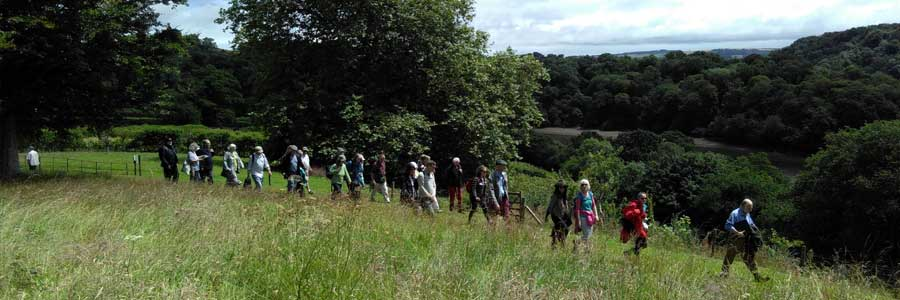 Events, walks and talks at Sharpham