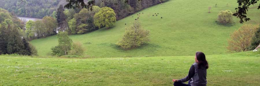 Finding tranquillity at Sharpham