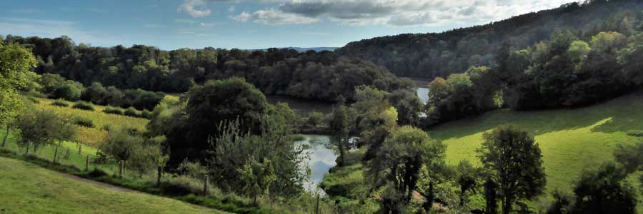 View down the River Dart